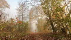Lone Wanderer (MSPhotography-Art) Tags: lichter night schwäbschealb deutschland landscape landschaft burg burghohenzollern germany outdoor natur clouds badenwürttemberg albtrauf wanderung wandern sterne swabianalb nature hohenzollern wolken alb badenwã¼rttemberg schwã¤bschealb