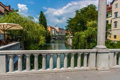IMG_9798 (ludo.depotter) Tags: ljubljana ljubljanica slovenië oudestad schoenmakersbrug