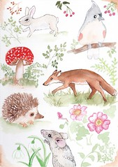 my watercolour book,sketches for fun (art by kim feint) Tags: watercolor fox hedgehog bird mouse sketch book journal