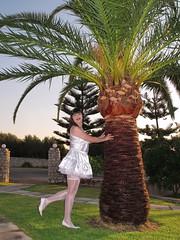 Flirty (Paula Satijn) Tags: white holiday hot sexy stockings girl garden outside shiny pumps dress legs silk skirt palm tgirl transvestite satin miniskirt gurl