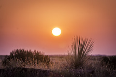 Yuca Sunrise (ashercurri) Tags: sunset sun colors sunrise colorado desert sony hdr highdynamicrange yuca nex nex6