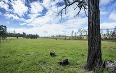 Lot 3 Orara Downs Lane, Levenstrath NSW