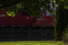 An NS and two CP motors pull NS 214 through Orange.  This distance, against the sun shot brought to you by two screaming kiddos ;-) (bdunn829) Tags: railroad orange ns trains ge norfolksouthern 214 emd intermodal railfanning sd60 orangeva ns214 emdsd60 cp6247