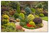 I have Garden Envy!!!! (Audrey A Jackson) Tags: autumn colour nature shrubs westmidlands walsall canon60d fourseasonsgarden 1001nightsmagiccity