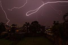 Lightning from my back steps in Greenslopes (Craig Jewell Photography) Tags: yard iso100 suburban australia brisbane lightning 16mm f11 2015 greenslopes 0ev 300sec ef1635mmf28liiusm canoneos1dmarkiv filename20151105212454x0k1278cr2