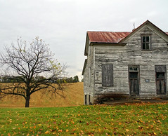 Abandoned Farmhouse (Wits End Photography) Tags: wood old brussels plant building tree green texture abandoned nature field architecture barn rural america outside illinois midwest exterior outdoor decay farm country neglected structure pale faded forgotten american crop worn weathered discarded forsaken plain rejected decayed bleached faint discolored