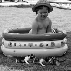 Miau (javisede) Tags: baby white black kid gatos bebe nio miau
