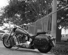 Indian (jeffk42) Tags: blackandwhite 120 film monochrome analog mediumformat outdoors indian motorcycle taproom 6x7 filmisnotdead ilforddelta3200pro mamiyarz67proii orlandobrewing ranalog