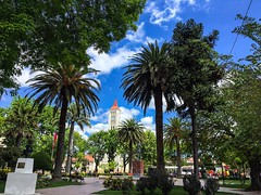 Casablanca main square (mariocristian_venegasibarra) Tags: chile square clocktower palmtree casablanca