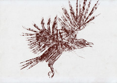 Fast Sketch of Bird (Tehanox) Tags: bird love sketch fast a4 sanguine biliana  encheva