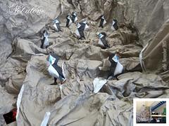 not alone lifesize (-sebl-) Tags: life sea paper square origami puffin huge sebl