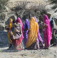 Women in colored sarees in Rajastan (David Clay Photography) Tags: purdah saree hindu