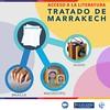 Acceso a la literatura: Tratado de Marrakech