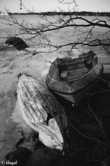 The place where you would like to be (El que retrata) Tags: finland suomi drama blogging winter frozen lake night sea ships broken hearth cold impressions tonight bar