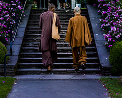 Robes Along the Roses (the_muddy_girl) Tags: city pink flowers roses people man flower men rose gardens oregon stairs garden walking portland stair purple pacific northwest path robe walk walkway robes