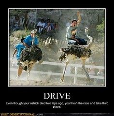 DRIVE (Chikkenburger) Tags: posters memes demotivational cheezburger workharder memebase verydemotivational notsmarter chikkenburger