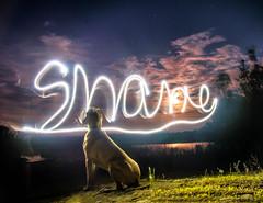 Shane (Swilso37) Tags: