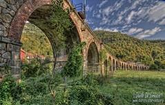railway bridge (danilodld) Tags: italia ponte piemonte cuneo autunno architettura archi ferrovia ormea visitpiedmont serialnumber6243405 visitpiedmontitaly 2015copyrightdanilodelorenzisdld