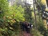 Promenade sur le Mont Sainte-Odile.