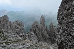 Zejście z przełęczy Forcella Cristina