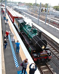 Australian class BB181/4  1079, arriving Corinda Railway Station, Brisbane for trip to Toowoomba Carnival of Flowers. (Photos by Lance) Tags: railroad focus tracks photographers brisbane tourist passengers cameras queensland arrival railfan touristattraction qr toowoomba steamtrain vintagetrain steamlocomotive caso queenslandrail touristtrain arhs consist qgr touristrailway qgt vintagerailway tourismqueensland queenslandtourism corindarailwaystation australiaclassbb18141079