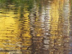 Jesie Herbst autumn Autunno (arjuna_zbycho) Tags: autumn fall nature fog colours nebel herbst autumncolors autunno jesie mga herbstfarben jesen koloryjesieni jesiennelicie