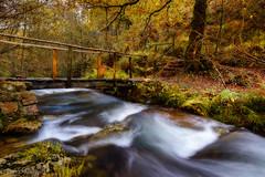 El viejo puente (Tabernilla (David Izaguirre)) Tags: españa david nikon europa bosque tamron cantabria 2470mm d610 ucieda davidizaguirre tabernilla