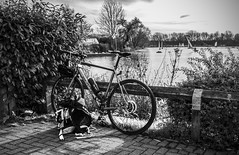 Taking a Break - Stanborough Lakes (GOR44Photographic@Gmail.com) Tags: bw bike mono lakes cycle fujifilm whyte wgc stanborough xf1 gor44