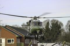 AAC AH-9 Lynx (Dan Kemsley) Tags: squirrel helicopter lynx frontline ah9