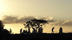 Gwada : mariés au coucher de soleil (2) (chriskatsie) Tags: photographe photographer sunset coucherdesoleil personnage mariage wedding sky cloud nuage guadeloupe deshaies contrejour people ombre shadow