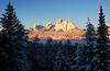 Tree-Framed Tetons (DigitalSmith) Tags: tetons grandtetonnationalpark mountains wyoming