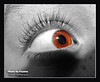 Nov 1 2015 - The Eye part 2 - Selfie by Peyton (La_Z_Photog) Tags: lazy photog elliott photography worland wyoming granddaughter self portrait selective color eye ball long lashes child 110115cucascameraaroundhouse