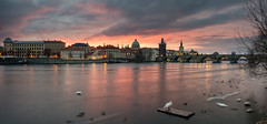 Guten Morgen Prag (Martin Häfeli Photography) Tags: prag prague swan karlsbrücke tschechien praha bridge moldau river morning earlymorning sunrise sun cloudy church city cityscape nikon panoramic pano czech republic czechrepublic vltava charlesbridge charles karlůvmost karlův towers türme turm tower red glow glühen rot