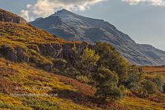 Liathach Shadows (Shuggie!!) Tags: bracken grasses hdr highlands landscape morninglight mountains rocks scotland torridon trees westerross zenfolio karl williams karlwilliams