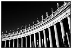 Colonne@SanPietro@Roma (Marco Di Ferrante) Tags: roma rome sanpietro sanpeter colonnato column piazza square contrast contrasto bw biancoenero papa pope francesco