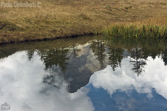 riflessi, reflections (paolo.gislimberti) Tags: paesaggi landscapes waterscapes acqueferme stillwaters lake lago reflections riflessi prateriaalpina alpinegrassland mountains montagne nuvole cielonuvoloso cloudysky clouds