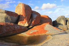 Red rock (rachFNQ) Tags: tasmania bayoffires nationalpark nature wilderness eastcoasttasmania australia australianlandscape sescape rocks ocean conservation