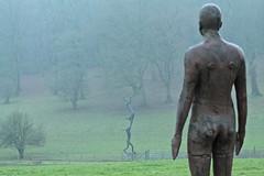 Seen through the eyes of.... (christina.marsh25) Tags: barryflannagan 30ftacrobats antonygormley rochecourtsculpturepark sculpture statue mist rain