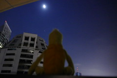 Swami & the moon tonight- Bangkok (ashabot) Tags: swami moon swamithemoon dark fullmoon bangkok thailand night nightshots lightanddark bluenight nightlight sky nightsky