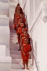 Mingun - pagode Hsinbyume 19 (luco*) Tags: myanmar birmanie burma mingun pagode pagoda hsinbyume moines monks novices moinillons jeunes garçons young boys flickraward flickraward5 flickrawardgallery