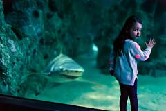 Emma. (Ian.I) Tags: sydneyaquarium iani ef50mmf12l ianibrahim canon5dmark3