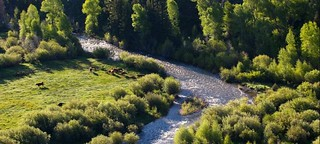 Wyoming Upland Hunting, Fishing, Horseback & Spa 60
