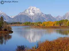 Early Morning Reflections (moelynphotos) Tags: autumn mountain mountains reflection landscape dawn scenery earlymorning wyoming tetons snowcovered grandtetonsnationalpark oxbowbend moelynphotos
