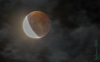 Eclipse de la Super Lune de sang/ Eclipse of the Super Blood Moon