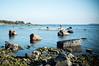 Kalastajat (timoppi) Tags: nature finland helsinki outdoor balticsea syksy vuosaari kallahti ulkoilu