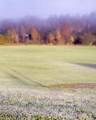 Frost, Fog, Foliage II (Patrick J. McCormack) Tags: autumn fall mamiya film landscape october vermont kodak foliage vt rz67 ektar