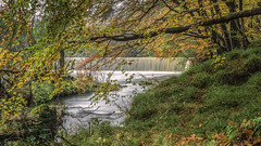 Guyzance in Autumn (Kevin_R_Shaw) Tags: water alnwick northumberland autumncolour rivercoquet guyzanceweir
