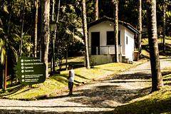 Nos arredores da Caverna do Diabo (Felipe Valim Fotografia) Tags: foto vale viagem ribeira valedoribeira ilhacomprida cavernadodiabo cajati caneneia