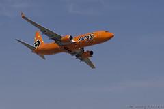 Mango B737 800 (4) (Indavar) Tags: plane airplane airshow chipmunk mustang albatros rand beech at6 radial an2 p51 l39 antonov dc4 dhc1 beech18 t28trojan b378