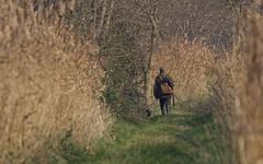 Chasseur ne connaissant pas les rémiz ni panures ....- IMG_5061 (6franc6) Tags: 6franc6 30 2015 décembre gard kalkoff languedoc petitecamargue rando vélo danger chasse chasseur